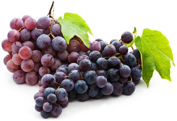 BioVin_whole_grape_extract