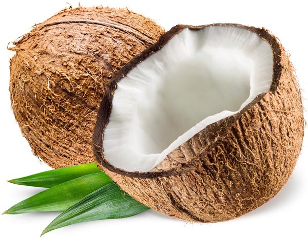 Coconut Oil – Refined